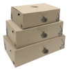 ECO BISTRO MEAL CARTONS.png