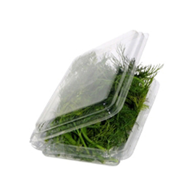 Nexday Supply 11733 Herb Clamshell Container With Hanging Tab